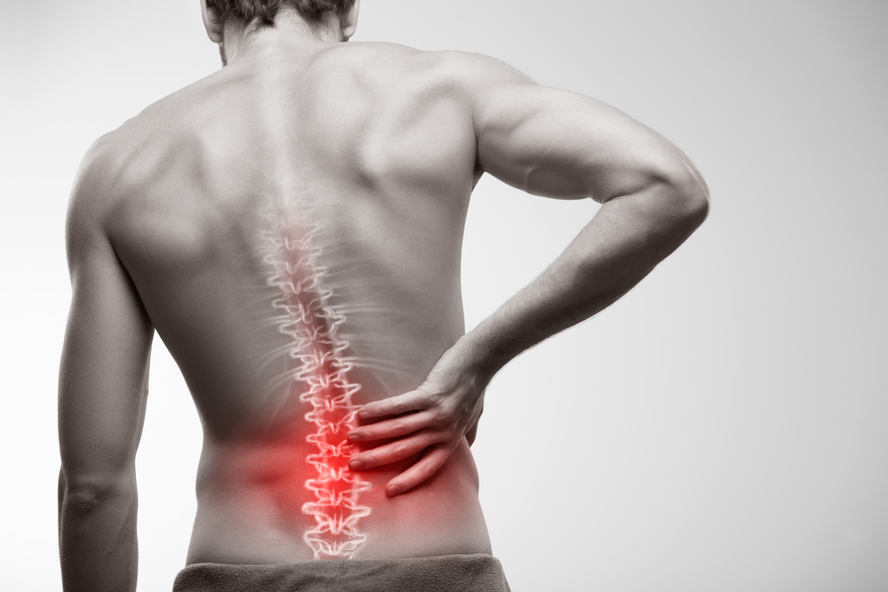 back pain come from