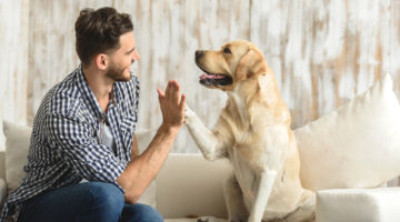 The Health Benefits of Owning a Dog You Need to Know About