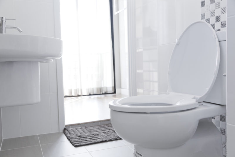 Groovy Top 5 Best Toilet Seats In 2019 Buyers Guide Housing Here Alphanode Cool Chair Designs And Ideas Alphanodeonline