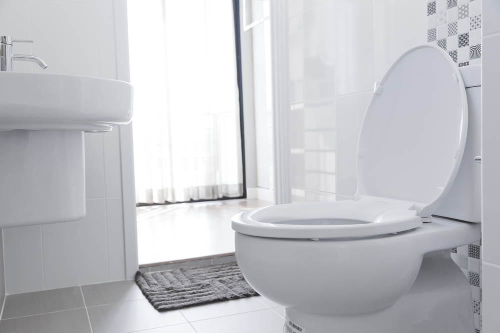 Remarkable Top 5 Best Toilet Seats In 2019 Buyers Guide Housing Here Pdpeps Interior Chair Design Pdpepsorg