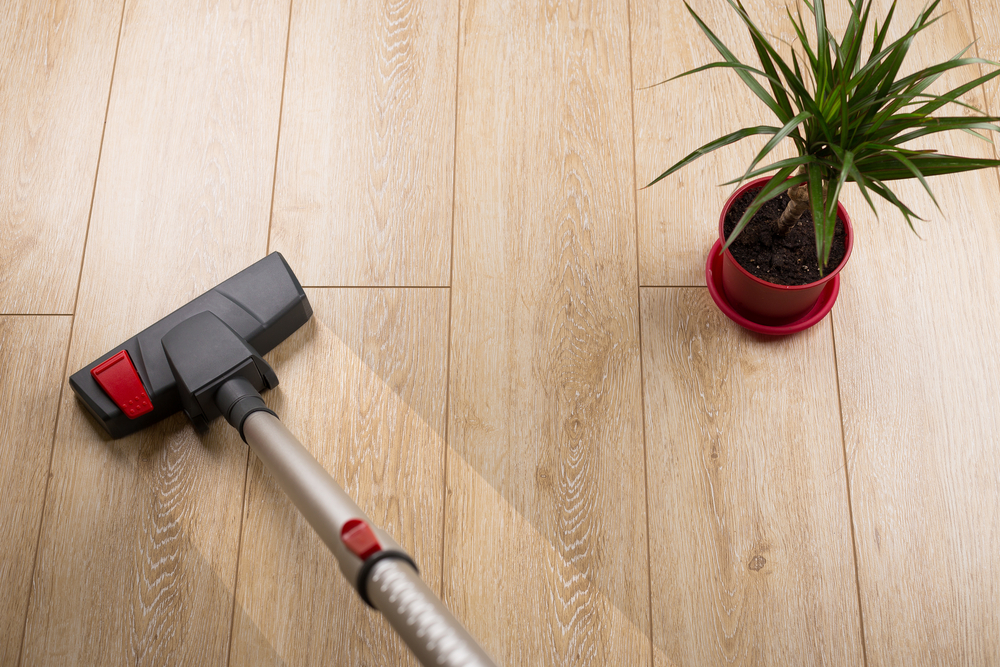 Why You Should Use Special Vacuum Cleaners for Laminate Floors