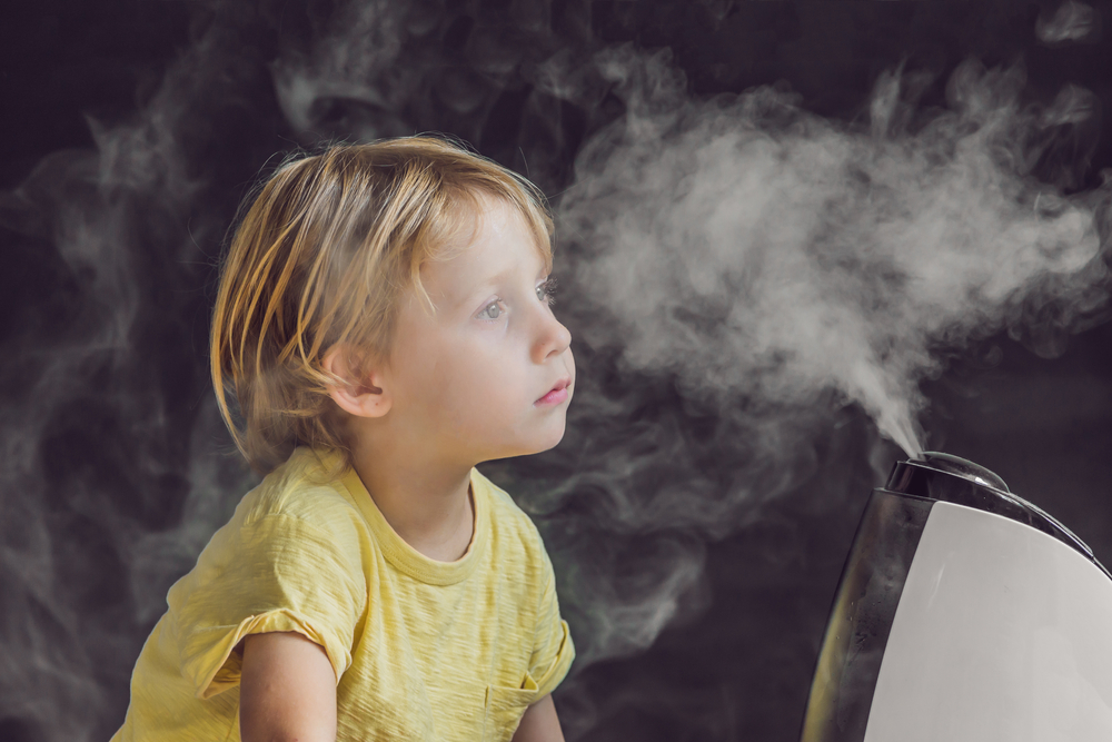 How to choose the best whole house humidifier